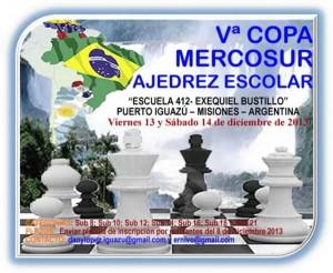 copamercosur_escolar2013